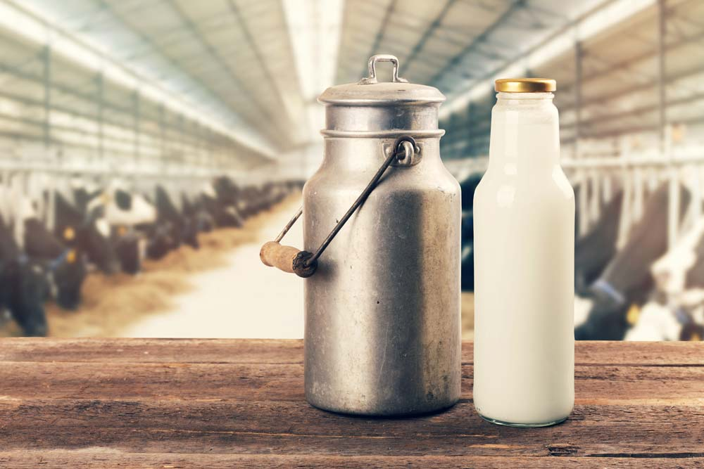 Milch und Akne – Die traurige Wahrheit